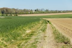 Agricultural fields and dirt road on a sunny spring day in Normandy, France. Countryside landscape.  Stock Images