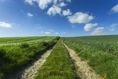 Agricultural fields and farm road on a sunny spring day in Normandy, France. Countryside landscape. Environment friendly Royalty Free Stock Photo
