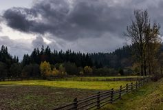 Agricultural fields in forest on cloudy day. Wooden fences among agricultural fields in forest on cloudy autumn day royalty free stock photos