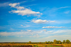 Agricultural fields and forest on horizon, Ukraine Stock Photos