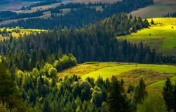 Agricultural fields on a forested hills. Lovely countryside scenery in early autumn Royalty Free Stock Images