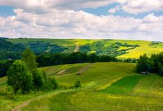 Agricultural fields on hills. Beautiful summer landscape Stock Photos