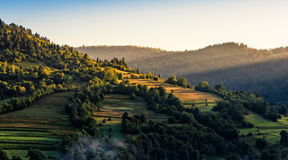 Agricultural fields on hills sunrise. Agricultural fields on hills in mountainous rural area at sunrise Stock Images