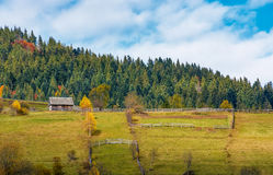 Agricultural fields on hillside near forest. Lovely autumnal scenery in mountains Royalty Free Stock Images