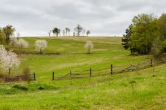 Wooden fence on hillside in the rural area Royalty Free Stock Images