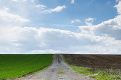 Agricultural fields with path between Royalty Free Stock Images