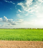 Agricultural fields in spring and sunset in sky with clouds Royalty Free Stock Photos