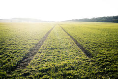 Agricultural Fields. Spring Time. Traces In Land From The Tractor. Sunset Royalty Free Stock Photos