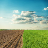 Agricultural fields and sunset in clouds over it Royalty Free Stock Image