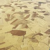 Agriculture Spain Stock Photography