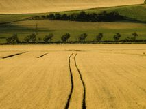 Agricultural filed with trees in a geometric forms. French agricultural landscape in a geometric composition Stock Photos