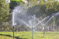 Agricultural garden by water Sprinkler. Nfarm with technology of sprinkler watering Stock Photo