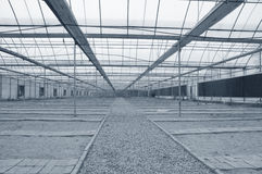 Agricultural greenhouse Royalty Free Stock Photography
