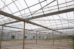 Agricultural greenhouse Royalty Free Stock Photos