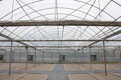 Agricultural greenhouse Stock Photo