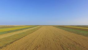 Agricultural grounds, aerial video. Fields with various types of agriculture, aerial video stock video footage