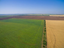 Agricultural grounds from bird& x27;s flight royalty free stock images