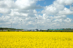 Agricultural hangar and wind turbine in rapeseed field Stock Images