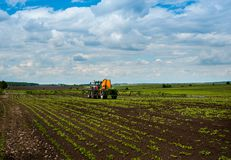 Tractor, sugar beet, spraying on field. Agricultural hills landscape tractor spraying sugar beet field Royalty Free Stock Images
