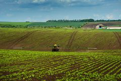 Tractor, sugar beet, spraying. Agricultural hills landscape tractor spraying sugar beet field Stock Image