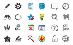 Agricultural icons. Gluten free symbols. Stock Images