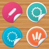 Agricultural icons. Gluten free symbols. Royalty Free Stock Photos