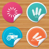 Agricultural icons. Wheat corn or Gluten free. Stock Photography