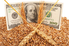 Agricultural income concept Royalty Free Stock Images