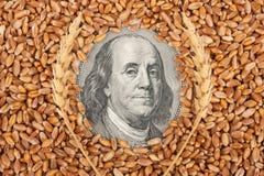 Agricultural income concept Stock Photos
