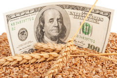 Agricultural income concept Royalty Free Stock Photography
