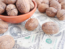 Agricultural Income from Walnut Royalty Free Stock Images