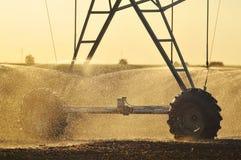 Agricultural Irrigation Sprinkler royalty free stock photo