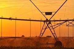Agricultural Irrigation Sprinkler Royalty Free Stock Photos
