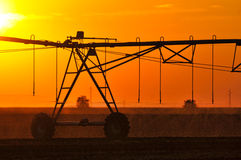 Agricultural Irrigation Sprinkler Stock Photography