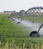Agricultural irrigation system Royalty Free Stock Photos