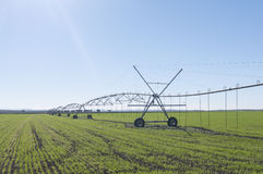 Agricultural irrigation system spray Stock Photography