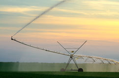 Agricultural irrigation system watering field of green wheat on Royalty Free Stock Photos