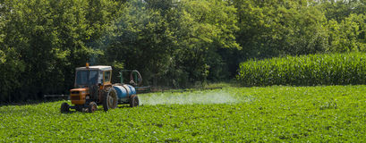 Agricultural labor. Pesticide treatment for soybeans Royalty Free Stock Image