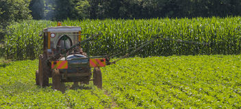 Agricultural labor. Pesticide treatment for soybeans Stock Image