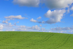 Agricultural land. Cloudy sky and crops in the Sicilian countryside Stock Photos