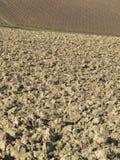 Agricultural land Stock Photos