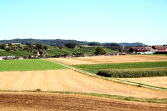 Agricultural Land. Switzerland Stock Photos