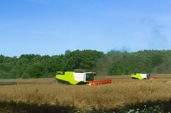 Two agricultural machines operate in the field, grain harvesting machines operate in the field, agricultural land. Agricultural land, ain harvesting machines Stock Image