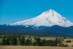 Farms and ranches in Oregon with Mount Hood in the background. Agricultural land at the base of Mount Hood in Oregon Royalty Free Stock Image