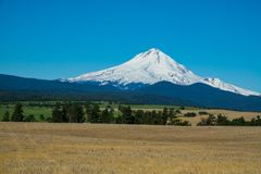 Farms and ranches in Oregon with Mount Hood in the background. Agricultural land at the base of Mount Hood in Oregon Royalty Free Stock Photo