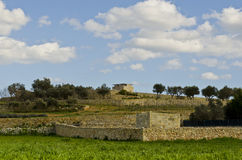 Agricultural land - Malta. Typical maltese fields on a slope with dividing rubble walls Stock Photography