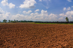 Agricultural land. Royalty Free Stock Photo