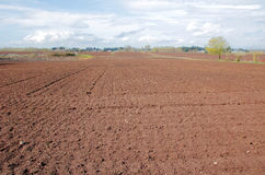 Agricultural Land Ready for Planting Royalty Free Stock Photo