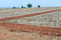 Agricultural land at rest waiting to be plowed Stock Photo