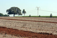 Agricultural land at rest waiting to be plowed. Agricultural land  at rest after harvest waiting to be plowed Stock Images